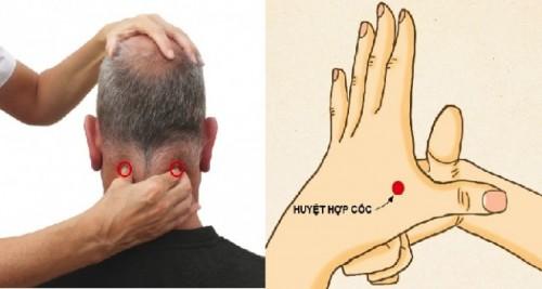 Lưu lại nhé: Cách bấm 15 huyệt đơn giản tại nhà, giúp bạn cắt đứt các cơn đau nhức